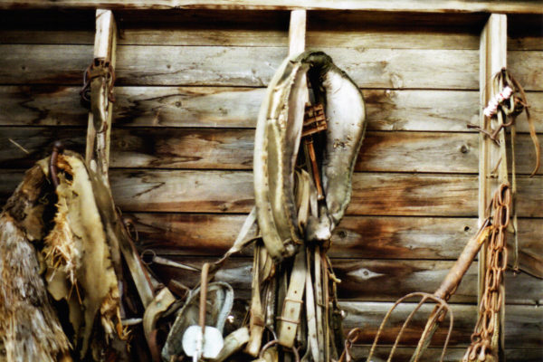 The Farm on Film: Old Horse Tack. 2015.