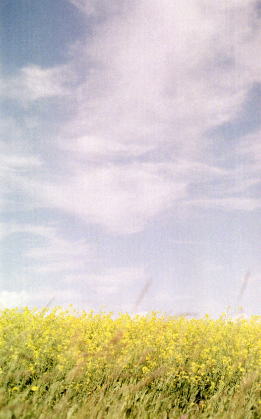 prairies on film vii