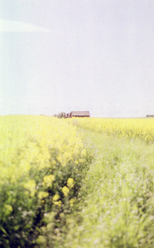 prairies on film iii