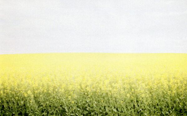 prairies on film ii
