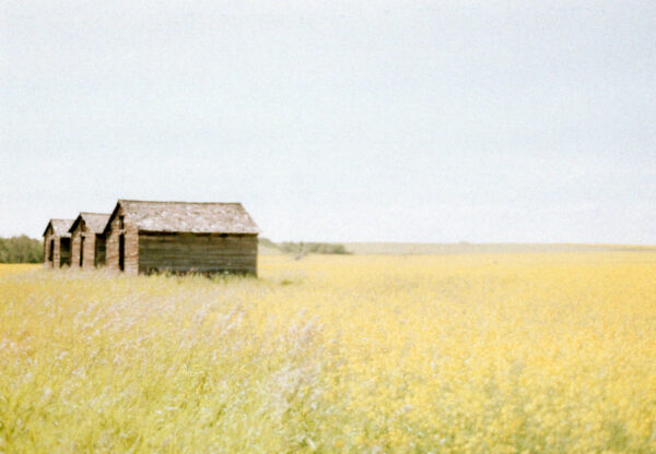 prairies on film i
