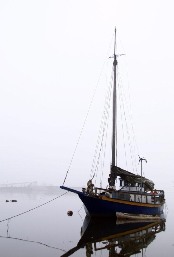 fraser river ship